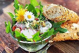 Kreatives Kochen mit eigener Note! Jetzt kommen frische Kräuter aus dem eigenen Beet vor der Tür. Verfeinern Sie Speisen auf mediterrane, klassische oder kreative Weise. Einzigartig ist der Duft und Geschmack schnittfrischer Küchenkräuter!