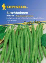 Buschbohne 'Primado' - Kiepenkerl �