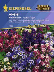Akelei 'Biedermeier' - Kiepenkerl �