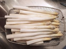 Spargel 'Huchel's Hochzucht' (wei�) - Asparagus 'Huchel's Hochzucht' (wei�)